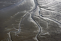 Elbwatt im Muehlenberger Loch: EUROPA, DEUTSCHLAND, SCHLESWIG- HOLSTEIN,  (GERMANY), 28.09.2014: Elbwatt im Muehlenberger Loch, bei Ebbe entstehen an den Raendern des Elbstroms Wattflaechen,
