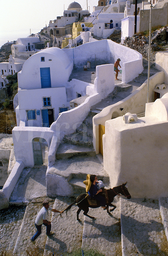 Tourist rides donkey up the 567 steep hillside steps from old port of Thira to town center; Santorini, Greece.