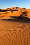 Morocco, Meknes-Tafilalet, Merzouga: Erg Chebbi, large dunes formed by wind-blown sand | Marokko, Meknes-Tafilalet, Merzouga: Erg Chebbi, durch Verwehungen entstandene Duenen