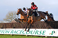 Winner of The SW Catering Chase  Colorado Doc (nearside) ridden by Connor Brace and trained by David Brace  during Horse Racing at Plumpton Racecourse on 10th February 2020