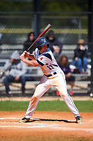 FDU-Florham Devils right fielder Ben Thompson (17) at bat during the first game of a doubleheader against the Farmingdale State Rams on March 15, 2017 at Lake Myrtle Park in Auburndale, Florida.  Farmingdale defeated FDU-Florham 6-3.  (Mike Janes/Four Seam Images)