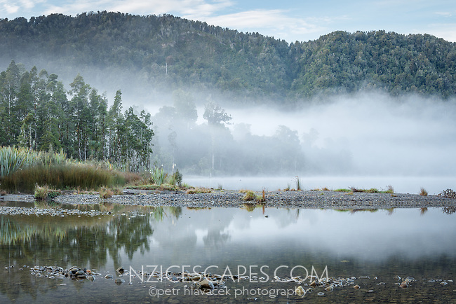 Native forest with morning fog at Lake Mapourika in winter, West Coast, Westland Tai Poutini National Park, UNESCO World Heritage Area, South Westland, New Zealand, NZ