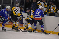 IJSHOCKEY: LEEUWARDEN: 19-01-2019, Elfstedenhal, UNIS Flyers -Zoetermeer Panters, uitslag , 6-2, ©foto Martin de Jong