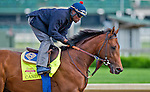 April 29, 2014: Candy Boy, trained by John Sadler, exercises in preparation for the Kentucky Derby at Churchill Downs in Louisville, KY. Scott Serio/ESW/CSM
