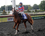 Brown Almighty with Francisco Torres aboard wins a Maiden Special Weight race Saturday afternoon at Arlington Park.