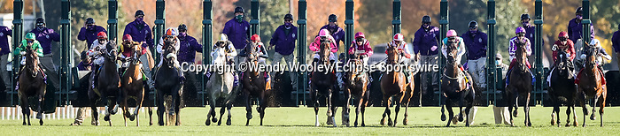 November 7, 2020 :Horses take off from the gate during the FanDuel Mile presented by PDJF on Breeders' Cup Championship Saturday at Keeneland Race Course in Lexington, Kentucky on November 7, 2020. Wendy Wooley/Breeders' Cup/Eclipse Sportswire/CSM