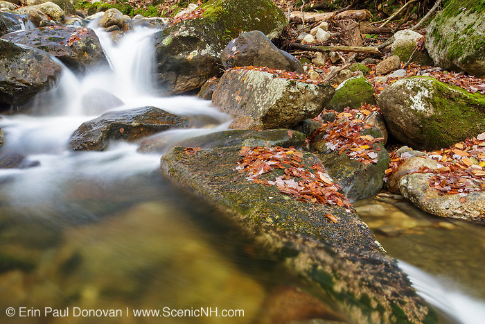 Talford Brook during the autumn months in Thornton, New Hampshire USA.