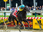 BALTIMORE, MD - MAY 21: Justin Squared #1, ridden by Martin A. Pedroza, wins the Chick Lang Stakes at Pimlico Race Course on May 21, 2016 in Baltimore, Maryland. (Photo by Zoe Metz/Eclipse Sportswire/Getty Images)