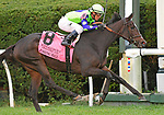 October 13, 2018 : Rushing Fall, ridden by Javier Castellano, wins the Queen Elizabeth II Challenge Cup presented by Lane's End at Keeneland on October 13, 2018 in Lexington, KY. Jessica Morgan/ESW/CSM