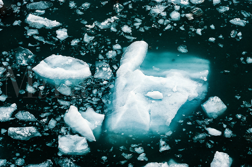 Iceberg floating in ocean, Alaska, USA.