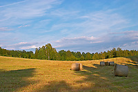 Cut field with hay bales at sunset. Blue sky with clouds. Smaland region. Sweden, Europe.