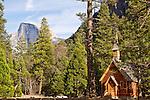 Yosemite National Park - more