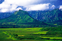 Kawainui Marsh leads to Mount Olomana and Koolau Mountains