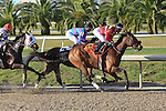 NEW ORLEANS, LA - FEBRUARY 20:<br /> Lovable Lyss #7 ridden by Hugh H Robertson leads early in the Rachel Alexandra Stakes during the Louisiana Derby Preview Race Day at Fairgrounds Race Course on February 20,2016 in New Orleans, Louisiana. (Photo by Steve Dalmado/Eclipse Sportswire/Getty Images)