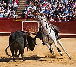 Feria de Fallas 2017.<br /> Corrida de Rejones.<br /> Diego Ventura - Manuel Manzanares - Lea Vicens.<br /> Toros de Fermin Bohorquez.<br /> Valencia, Valencia (Spain).<br /> 19 de marzo de 2017.