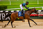 JUNE 03, 2020 : Fauci with Tyler Gaffalino aboard, finishes 2nd in $64,000 Maiden Special Weight, for two year ols going 5 furlongs, at Belmont Park, Elmont, NY.  Sue Kawczynski/Eclipse Sportswire/CSM