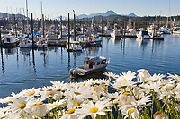 Thomas Basin harbor, Ketchikan, Alaska.