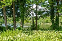 Park des Landgut Stober, Groß Behnitzer See, Groß Behnitz, Nauen, Brandenburg, Deutschland