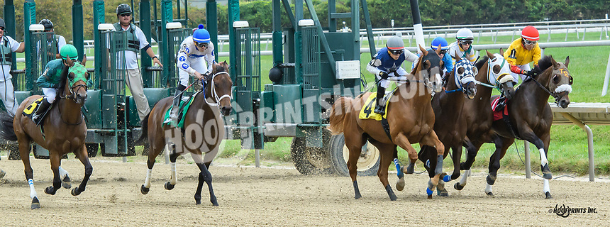Stand Guard winning at Delaware Park on 9/14/19