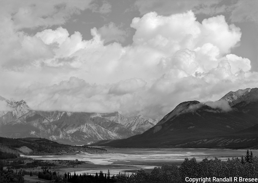 """""""Bright Cloud Along David Thompson Highway"""" <br /> Alberta, Canada <br /> <br /> Driving on David Thompson Highway a few miles east of the Saskatchewan River Crossing in Banff National Park leads to the park boundary where this photograph was recorded. I love the gigantic white cloud which softly dominates the enormous scene below it."""