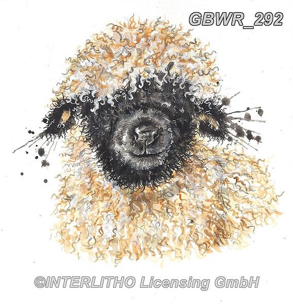 Simon, REALISTIC ANIMALS, REALISTISCHE TIERE, ANIMALES REALISTICOS, innovativ, paintings+++++KatherineWIlliams_SPlatterBetty,GBWR292,#a#, EVERYDAY