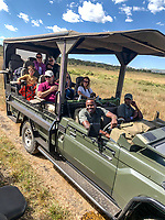 Tanzania.  Open-air Game Drive Vehicle in the Loliondo Concession, adjacent to northeastern Serengeti NP.