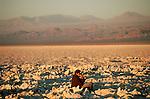 Victoria Milan Chile Atacama Desert 2000.