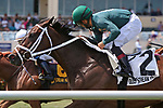 HALLANDALE BEACH, FL - MARCH 31:  #2 Figarella's Queen with jockey Luis Saez on board, wins the Sanibel Island Stakes at Gulfstream Park on March 31, 2018 in Hallandale Beach, Florida. (Photo by Liz Lamont/Eclipse Sportswire/Getty Images)