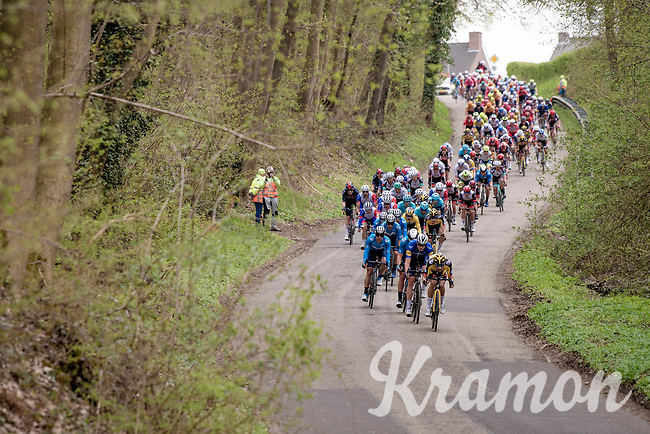 peloton descending<br /> <br /> 55th Amstel Gold Race 2021 (1.UWT)<br /> 1 day race from Valkenburg to Berg en Terblijt; raced on closed circuit (NED/217km)<br /> <br /> ©kramon