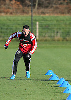 Pictured: Leon Britton  Wednesday 10 December 2014<br />