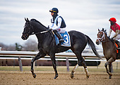 01/01/2020 - Jerome Stakes at Aqueduct