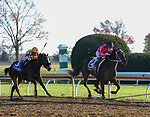 November 6, 2020: Vequist, ridden by Joel Rosario, wins the Juvenile Fillies on Breeders' Cup Championship Friday at Keeneland on November 6, 2020: in Lexington, Kentucky. Bill Denver/Breeders' Cup/Eclipse Sportswire/CSM