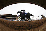 DEL MAR, CA - NOVEMBER 03: Sharp Azteca #3, ridden by Paco Lopez, battles eventual winner Battle of Midway #9, ridden by Flavien Prat, in the Breeders' Cup Las Vegas Dirt Mile on Day 1 of the 2017 Breeders' Cup World Championships at Del Mar Thoroughbred Club on November 3, 2017 in Del Mar, California. (Photo by Alex Evers/Eclipse Sportswire/Breeders Cup)