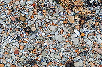 A pattern of stone on the shore. During the late summer at Sunset Bay, Oregon.
