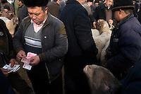 Uighur men bargain over sheep for sale at the Kashgar Sunday Animal Market in Kashgar, Xinjiang, China.