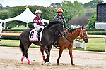HOT SPRINGS, AR - APRIL 13:  Apple Blossom Handicap at Oaklawn Park on April 13, 2018 in Hot Springs,Arkansas.  #6 Streamline with jockey Gary L. Stevens. (Photo by Ted McClenning/Eclipse Sportswire/Getty Images)