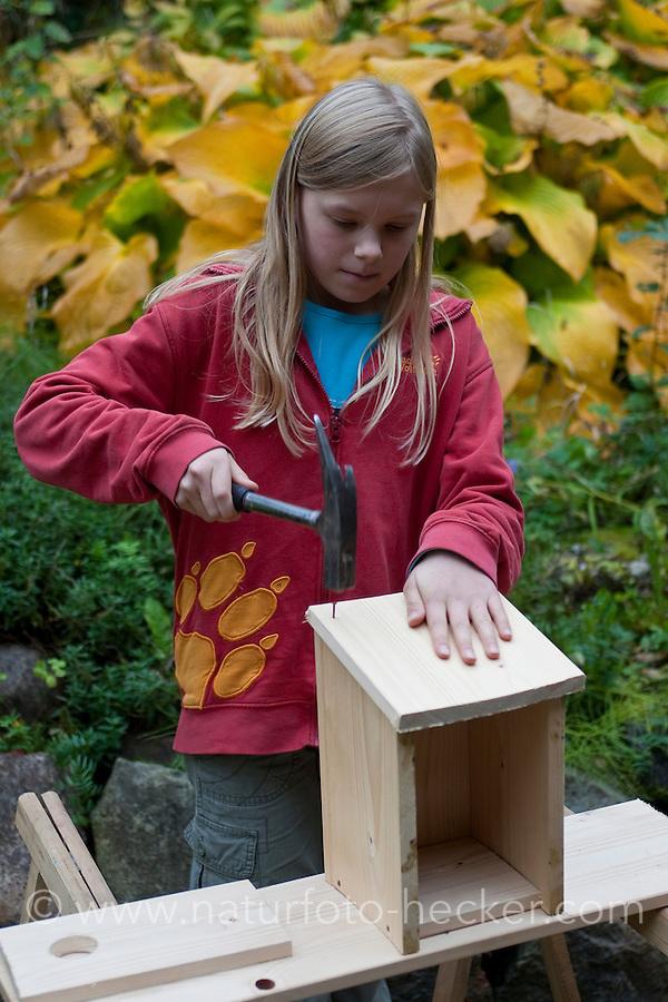 Mädchen baut einen Vogel-Nistkasten aus Brettern, 6. Schritt: Teile zusammen nageln