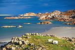 Great Britain, Scotland, Inner Hebrides, Argyll & Bute (Strathclyde), Isle Of Mull (Fionnphort): View over Sound of Iona | Grossbritannien, Schottland, Inselgruppe Innere Hebriden, Argyll & Bute (Strathclyde), Isle Of Mull (Fionnphort): der Sound of Iona