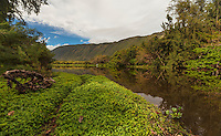 A small hiking trail along the Waipi'o (or Curved Water) Valley River on the Big Island of Hawai'i.