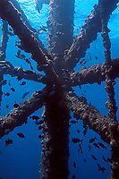 structure of an oil rig platform, Gulf of Mexico, Flower Gardens, off Texas, Atlantic