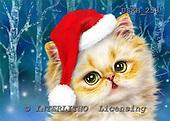 Kayomi, CHRISTMAS ANIMALS, WEIHNACHTEN TIERE, NAVIDAD ANIMALES, paintings+++++SantaKittenInForest,USKH258,#xa# christmas stocking,kitten,cat