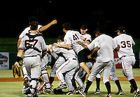 The AZL Giants celebrate the championship win over the Angels at Tempe Diablo Stadium  - 08/31/2008. The Giants defeated the Angels, 4-2...Photo by:  Bill Mitchell/Four Seam Images