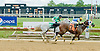 Chasing the Cash winning at Delaware Park on 6/6/12