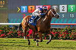 DEL MAR, CA  AUGUST 22 : #3 Lieutenant Dan, ridden by Geovanni Franco, is all alone in the stretch of the Green Flash Handicap (Grade lll)   at Del Mar Thoroughbred Club in Del Mar, CA  (Photo by Casey Phillips/Eclipse Sportswire/CSM)