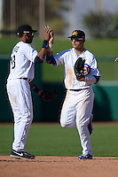 Mesa Solar Sox outfielder Albert Almora (8), of the Chicago Cubs organization, high fives Dixon Machado (13) after an Arizona Fall League game against the Scottsdale Scorpions on October 15, 2013 at HoHoKam Park in Mesa, Arizona.  Mesa defeated Scottsdale 7-4.  (Mike Janes/Four Seam Images)