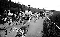 Tour de Suisse 2012.stage 4: Aarberg - Trimbach/Olten, 188.8 km