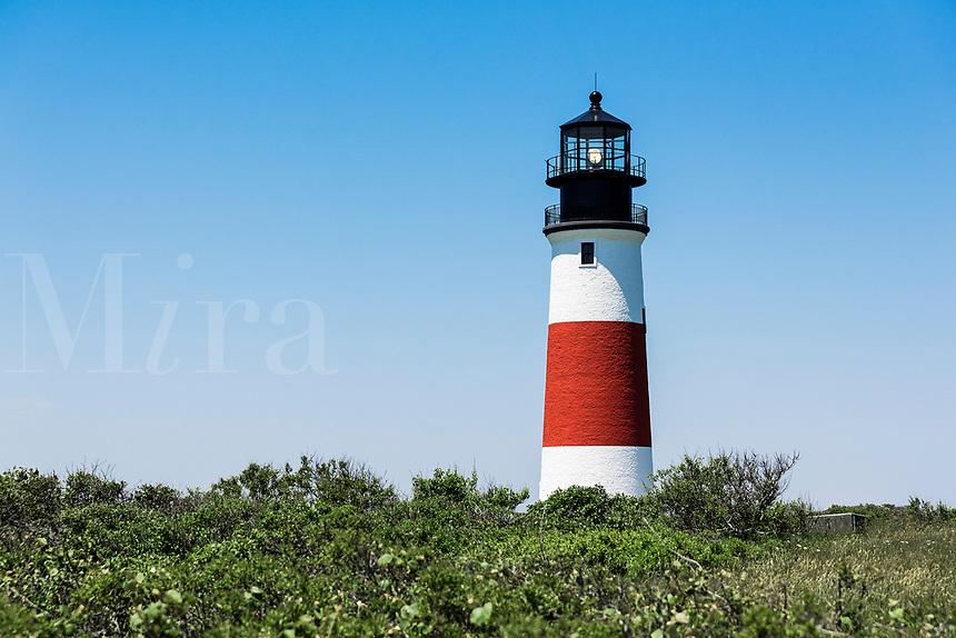 Sankaty Lighthouse in Siasconset, Nantucket, Massachusetts, USA.