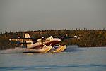 Twin Otter floatplane landing