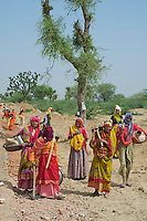 Rajasthan near Jaipur..Women workers on the Roadside