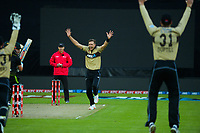 NZ's Tim Southee appeals during the third international men's T20 cricket match between the New Zealand Black Capss and Australia at Sky Stadium in Wellington, New Zealand on Wednesday, 3 March 2021. Photo: Dave Lintott / lintottphoto.co.nz